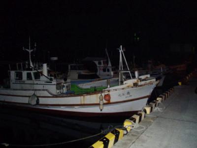 漁港で釣りたい・・・