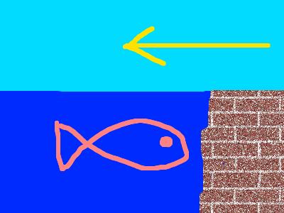 真水と海水(下げ潮)